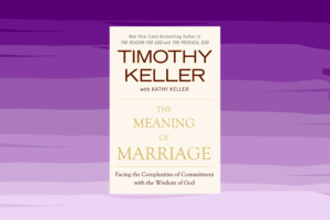 meaning of marriage book review